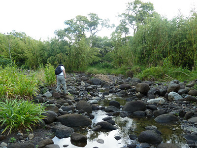 picture of wailua river crossing